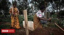 Large Ebola outbreaks new normal, says WHO