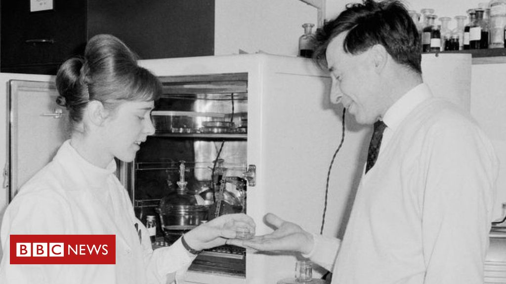 Female scientist's IVF contribution was 'unrecognised'