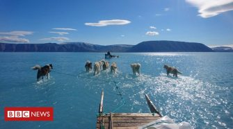 Greenland's 'unusual' melting sea ice captured in stunning image