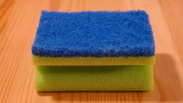 Kitchen Sponges Host Bacteria-fighting Microbes