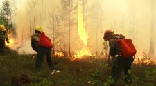 Arctic wildfires: What's caused huge swathes of flames to spread?