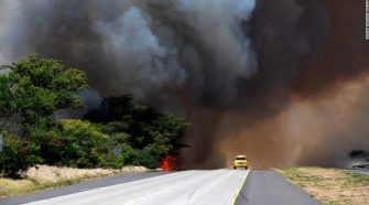 Maui fire: People and animals evacuated as blaze scorches 3,000 acres