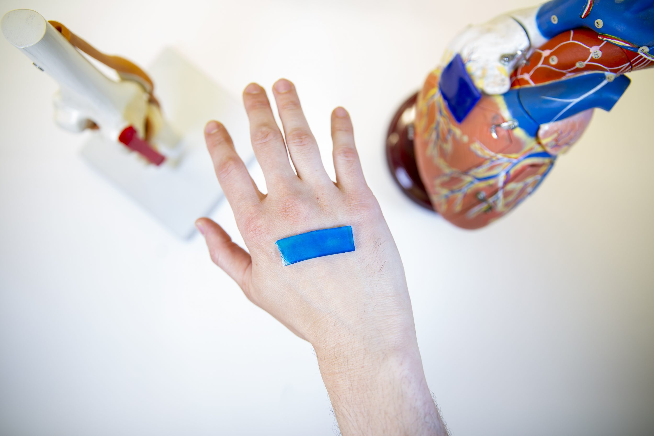 New bandage technology reduces scarring thanks to the power of nature – BGR