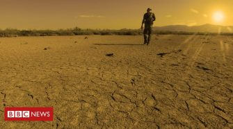 Climate change: July 'marginally' warmest month on record