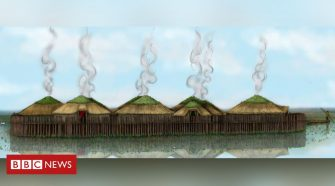 Early fish tapeworms found at 'Britain's Pompeii' Must Farm