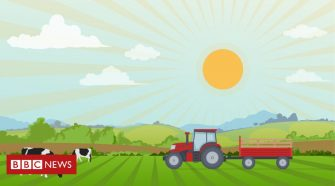 Five ways UK farmers are tackling climate change