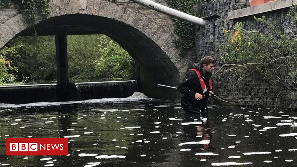 Rivers used as 'open sewers', says WWF charity