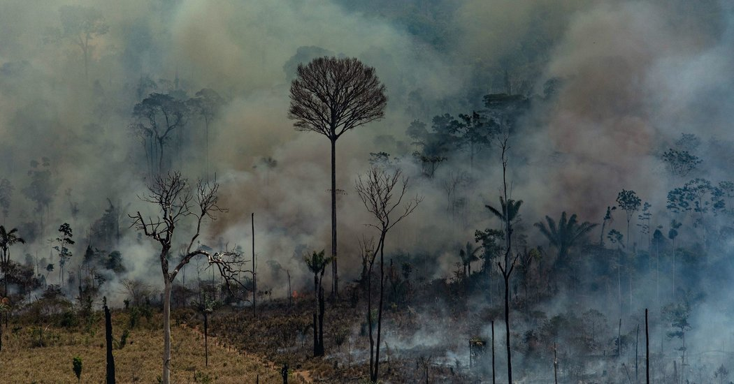 Brazil Military Mobilizes to Fight Amazon Fires, and Restore 'Positive Perception'