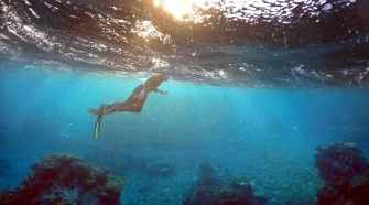 Israeli researchers are using 3D printing technology to help rebuild coral reefs