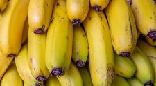 AI Tool Helps Protect the Much-loved Banana