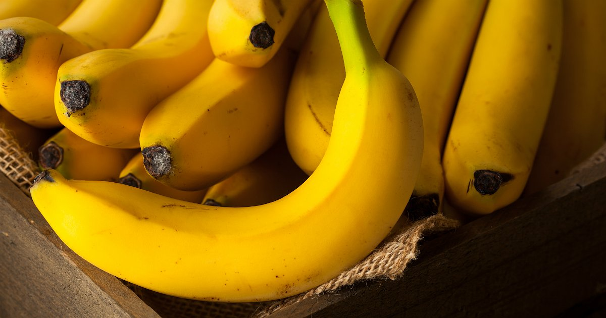 World's bananas in trouble as devastating fungus reaches Colombia