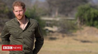 Prince Harry: Protecting nature doesn't make me a hippy