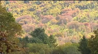 State health officials to battle potentially deadly disease in Carbon County