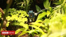 Plant 'takes' world's first selfie in London Zoo experiment
