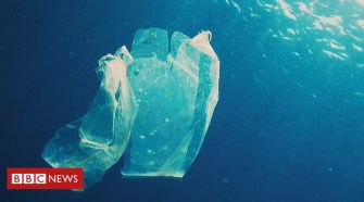Plastic pollution: how plastic bags could help save the planet