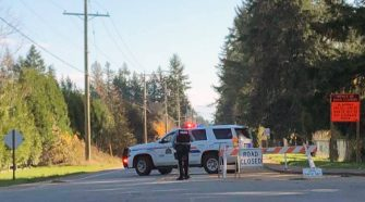 Witness to Langley police pursuit saw SUV fleeing 'seven to nine' police vehicles – Aldergrove Star
