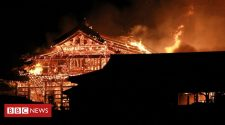 Shuri Castle: Fire engulfs world heritage site in Japan