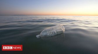Where plastic outnumbers fish by seven to one