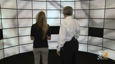 Stony Brook University's Immersive Display Chambers Offers A Whole New World For Doctors, Scientists – CBS New York