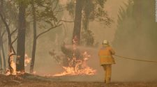Australia fires: New South Wales declares state of emergency amid record-breaking heat wave