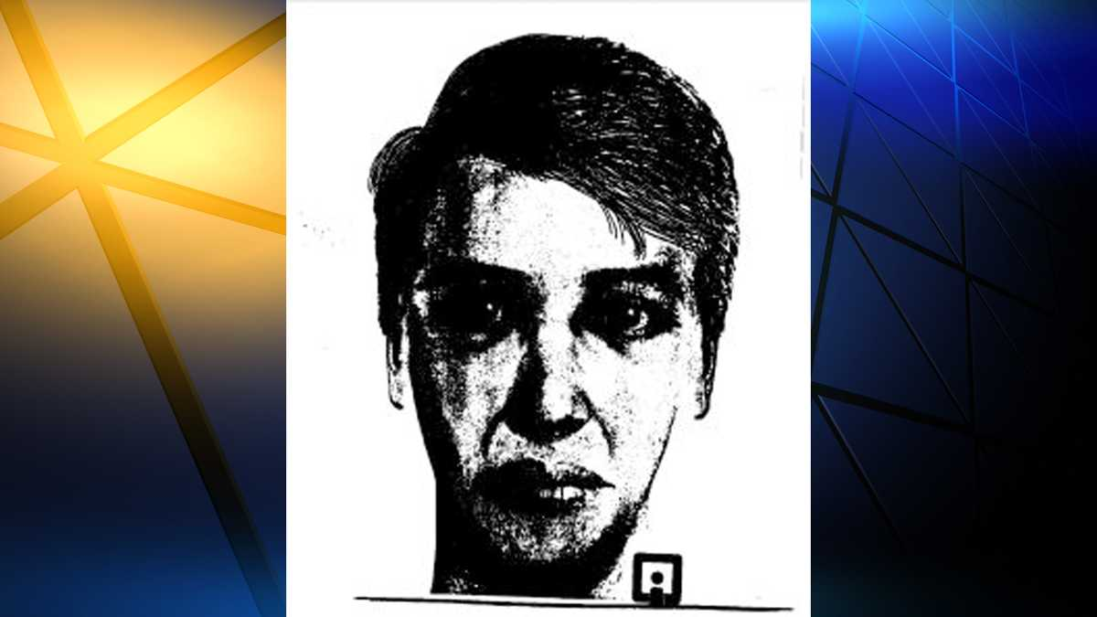 Lawrence, Riley County police warn of college serial rapist over holiday break at KU and K-State