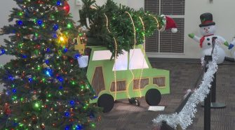 Parade of Trees at School of Mines and Technology