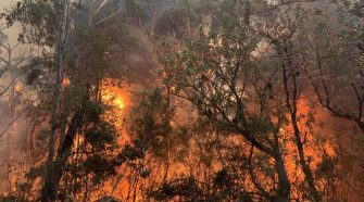 Breaking: Southern Highlands towns under fire attack, fire impact Wingello