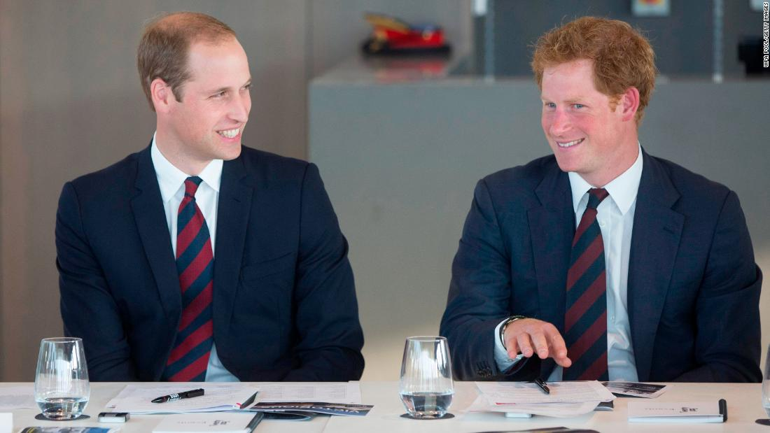 Prince Harry and Prince William say bullying story is false