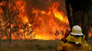 Bushfires in Old Bar, New South Wales