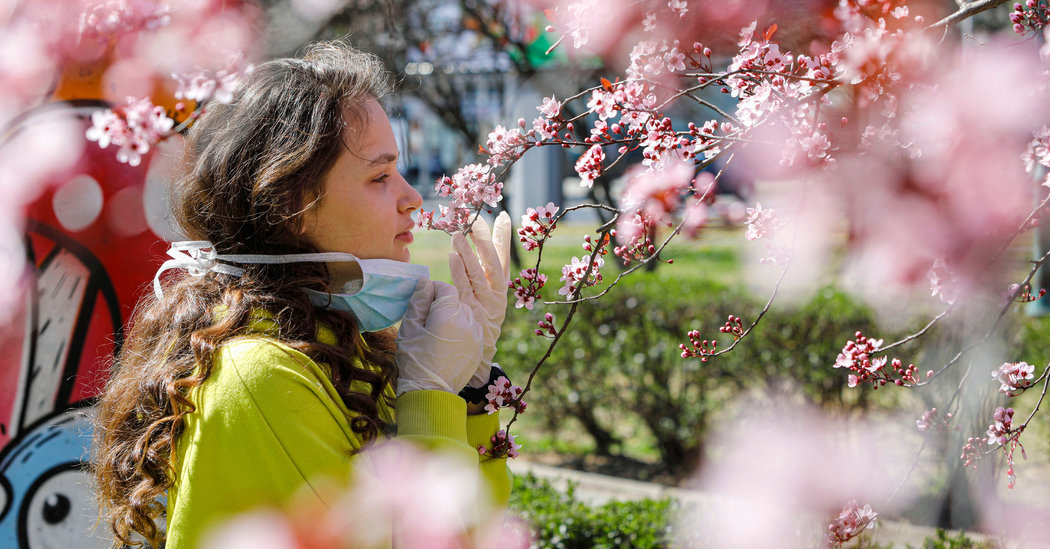 Lost Sense of Smell May Be Peculiar Clue to Coronavirus Infection