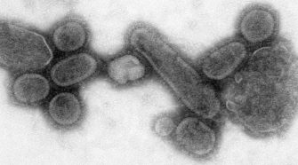 The Health 202: Twelve takeaways from the 1918 flu epidemic that help us think about the novel coronavirus