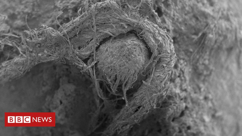 50,000-year-old string found at France Neanderthal site