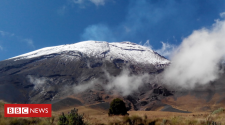 Volcanic time-bomb threatens nearby trees