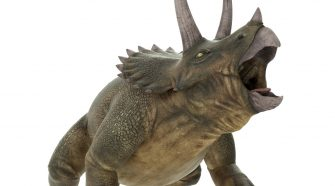 Discover: Take a break from COVID-19 news to meet some Canadian dinosaurs