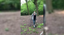 "Central Park ""Karen"": Woman placed on leave after video showing confrontation over unleashed dog in Central Park goes viral"