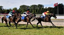 Aalborg racecourse: police intervened at Monday