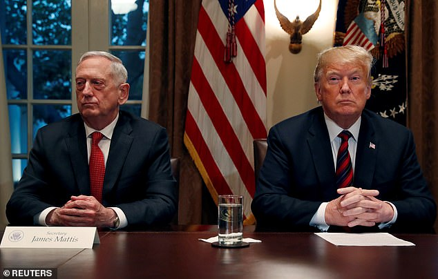 Gone: Another Reddit commenter reached his last straw when Former United States Secretary of Defense Jim Mattis stepped down on January 1, 2019