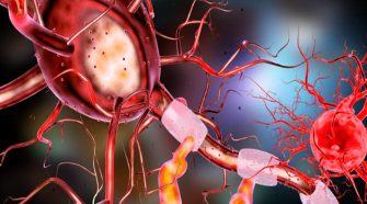 Neurons that fire together, wire together… Ok, but how?