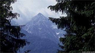 Spruce trees and mountain (Image: Dr Marry Gillham Archive/Flickr)
