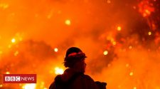 California and Oregon 2020 wildfires in maps, graphics and images