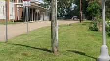 Police: Assault reported at Dothan's Carver School for Math, Science, and Technology | WDHN