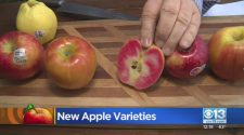 New Varieties Of Apples – CBS Sacramento