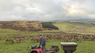 How technology is helping red meat's carbon efficiency - News