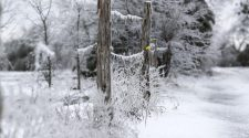A timeline of last week's record-breaking Brazos Valley cold snap | Latest Headlines