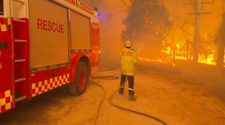 firefighter putting out bushfire