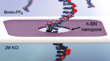 Research advances emerging DNA sequencing technology