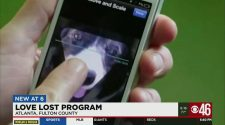 Pet facial recognition technology helping owners reunite with lost pets | News