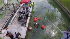 Technology could be used to respond to Lee County algae blooms