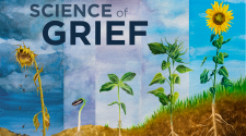 New Podcast from WDET and Science Gallery Detroit Addresses Mental Health, Grief and Young People